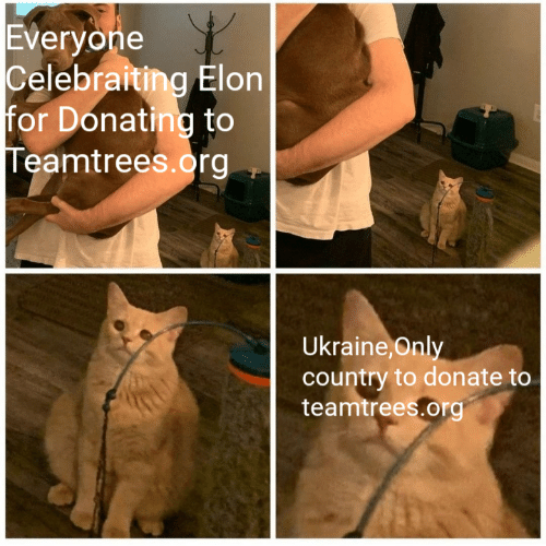 Ukraine: Everyone  Celebraiting Elon  for Donating to  Teamtrees.org  Ukraine, Only  country to donate to  teamtrees.org