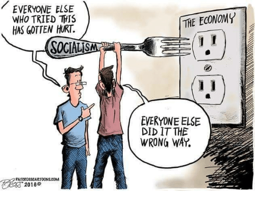 Socialism, Com, and Who: EVERYONE ELSE  WHO TRIED THIS  HAS GOTTEN HURT  THE ECONOMY  SOCIALISM  EVERYONE ELSE  DID IT THE  WRONG WAY.  PATCROSSCARTOONS.COM  2018