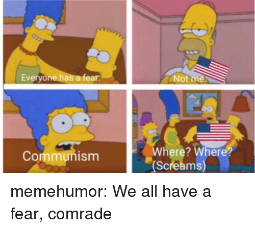 Tumblr, Blog, and Http: Everyone has a fear  Not  Where? Where?  Screams  Communism memehumor:  We all have a fear, comrade