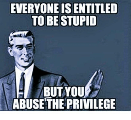 Memes, 🤖, and Privileged: EVERYONE IS ENTITLED  TO BE STUPID  BUT YOU  ABUSE THE PRIVILEGE