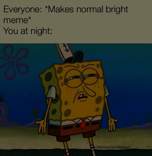 Meme, You, and Normal: Everyone: *Makes normal bright  meme  You at night:  OffendedVanillaBean