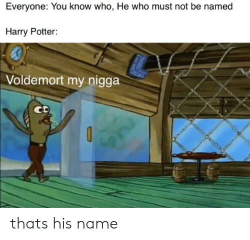 voldemort: Everyone: You know who, He who must not be named  Harry Potter:  Voldemort my nigga  CD thats his name