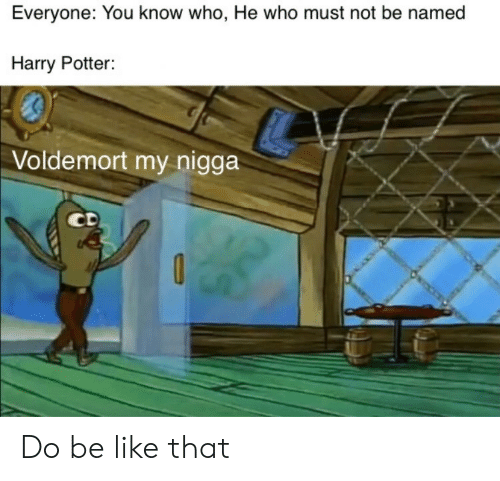 voldemort: Everyone: You know who, He who must not be named  Harry Potter:  Voldemort my nigga  CD Do be like that