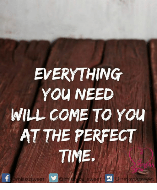 imy: EVERYTHING  You NEED  WILL COME TO You  AT THE PERFECT  TIME.  aimnis sweet imi syousweet  omissusweet
