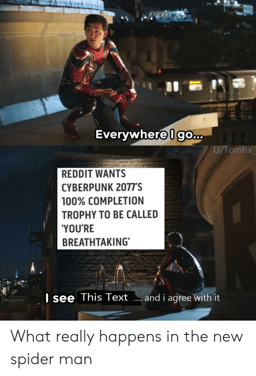 Reddit, Spider, and SpiderMan: Everywhere Igo...  U/Tomhx  REDDIT WANTS  CYBERPUNK 2077'S  100% COMPLETION  TROPHY TO BE CALLED  'YOU'RE  BREATHTAKING  Isee This Text  and i agree with it What really happens in the new spider man
