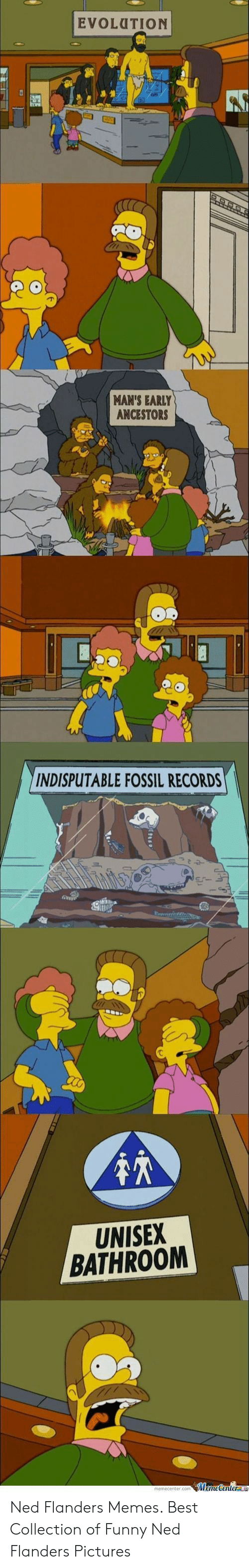 Ned Flanders Meme: EVOLUTION  MAN'S EARLY  ANCESTORS  INDISPUTABLE FOSSIL RECORDS  UNISEX  BATHROOM  MemeCenter Ned Flanders Memes. Best Collection of Funny Ned Flanders Pictures