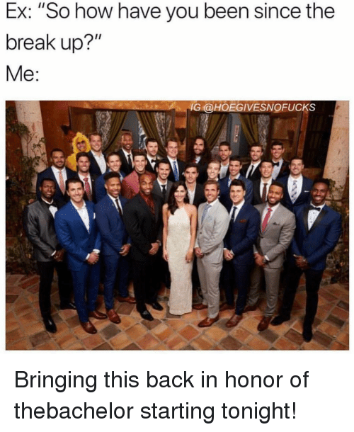 """Break, Girl Memes, and Back: Ex: """"So how have you been since the  break up?""""  IG @HOEGIVESNOFUCKS Bringing this back in honor of thebachelor starting tonight!"""