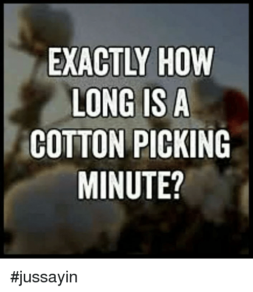 Dank, 🤖, and How: EXACTLY HOW  LONG IS A  COTTON PICKING  MINUTE? #jussayin