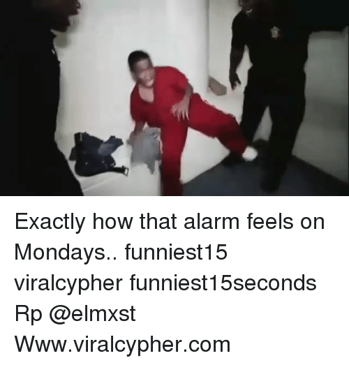 Funny, Mondays, and Alarm: Exactly how that alarm feels on Mondays.. funniest15 viralcypher funniest15seconds Rp @elmxst Www.viralcypher.com