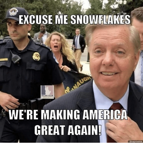 America, Memes, and 🤖: EXCUSE ME SNOWFIAKES  WE'RE MAKING AMERICA  GREAT AGAIN!  Snapmeme