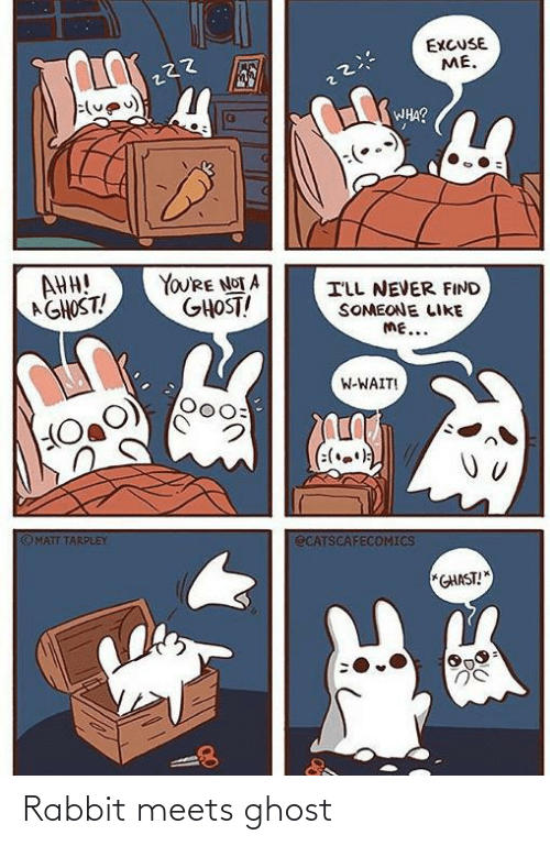 Rabbit: EXCUSE  ME.  WHA?  AHH!  AGHOST!  YOU'RE NOT A  GHOST!  ILL NEVER FIND  SOMEONE LIKE  ME...  W-WAIT!  (:(.)  OMATT TARPLEY  ECATSCAFECOMICS  *GHAST! Rabbit meets ghost