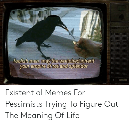 figure out: Existential Memes For Pessimists Trying To Figure Out The Meaning Of Life