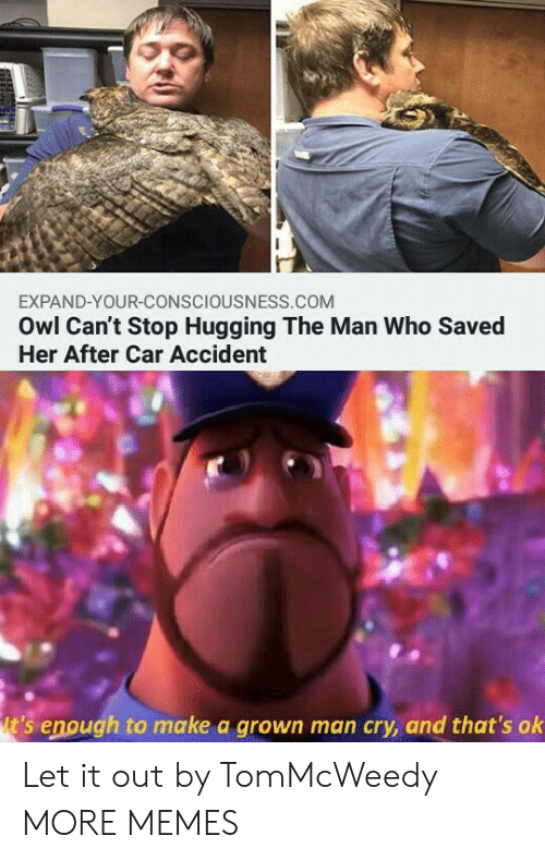 owl: EXPAND-YOUR-CONSCIOUSNESS.COM  Owl Can't Stop Hugging The Man Who Saved  Her After Car Accident  t's enough to make a grown man cry, and that's ok Let it out by TomMcWeedy MORE MEMES