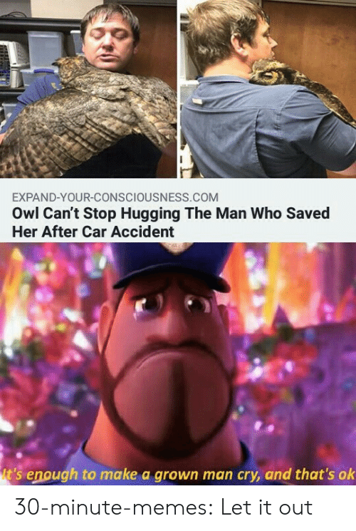 owl: EXPAND-YOUR-CONSCIOUSNESS.COM  Owl Can't Stop Hugging The Man Who Saved  Her After Car Accident  t's enough to make a grown man cry, and that's ok 30-minute-memes:  Let it out