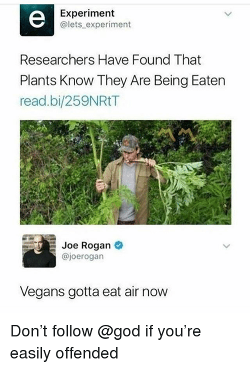 God, Joe Rogan, and Memes: Experiment  @lets experiment  Researchers Have Found That  Plants Know They Are Being Eaten  read.bi/259NRtT  Joe Rogan  @joerogan  Vegans gotta eat air now Don't follow @god if you're easily offended