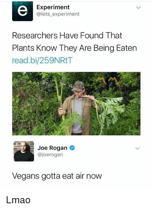Joe Rogan, Lmao, and Memes: Experiment  @lets_experiment  Researchers Have Found That  Plants Know They Are Being Eaten  read.bi/259NRtT  Joe Rogan  @joerogan  Vegans gotta eat air now Lmao