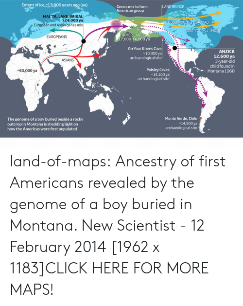 genome: Extent of ice13.000 years ago (ya)  Genes mix to form  American group  LAND BRIDGE  MAL'TA, LAKE BAIKAL  24,000 ya  6000-4000 va SAOOAO  European and Asian genes mix  3000-2000 va INUI  MERICANS  17,000-14,000 ya  EUROPEANS  On Your Knees Cave  ~10,300 ya  archaeological site  ANZICK  12,600 ya  3-year-old  child found in  Montana 1968  ASIANS  Paisley Caves  14,100 ya  archaeological site  60,000 ya  Monte Verde, Chile  The genome of a boy buried beside a rocky  outcrop in Montana is shedding light on  how the Americas were first populated  14,500 ya  archaeological site land-of-maps:  Ancestry of first Americans revealed by the genome of a boy buried in Montana. New Scientist - 12 February 2014 [1962 x 1183]CLICK HERE FOR MORE MAPS!