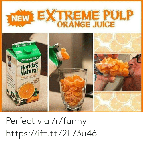 Funny, Juice, and Orange: EXTREME PULP  ORANGE JUICE  NEW  2  EXTREME PULP  EXTREME PULP  Floridas  Natural Perfect via /r/funny https://ift.tt/2L73u46