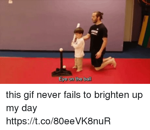 Gif, Girl Memes, and Never: Eye on the ball this gif never fails to brighten up my day https://t.co/80eeVK8nuR