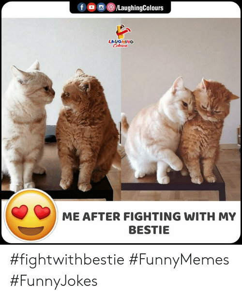 Indianpeoplefacebook, Fighting, and Laughing: f /LaughingColours  LAUGHING  Celeurs  ME AFTER FIGHTING WITH MY  BESTIE #fightwithbestie #FunnyMemes #FunnyJokes