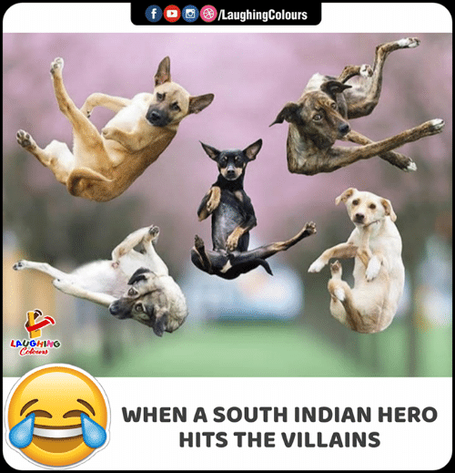 Indian, Indianpeoplefacebook, and Villains: f  LaughingColours  LAUGHING  Colours  WHEN A SOUTH INDIAN HERO  HITS THE VILLAINS