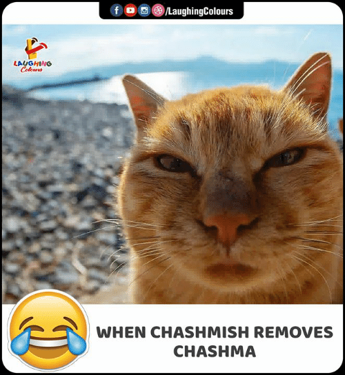 Indianpeoplefacebook, Laughing, and Colours: f  LaughingColours  LAUGHING  Colours  WHEN CHASHMISH REMOVES  CHASHMA