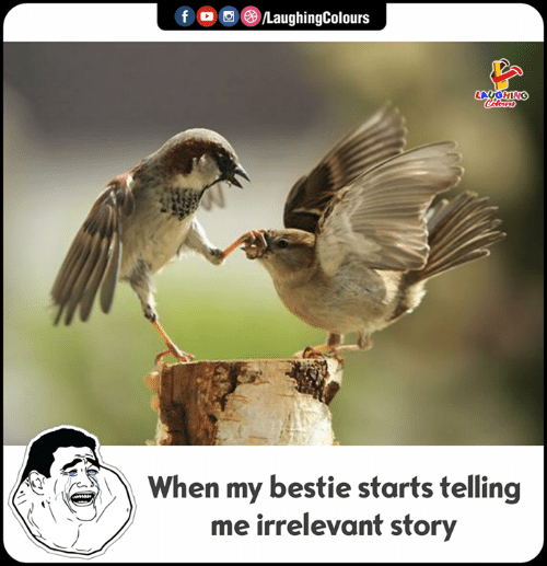 irrelevant: f LaughingColours  LAUGHING  Colours  When my bestie starts telling  me irrelevant story