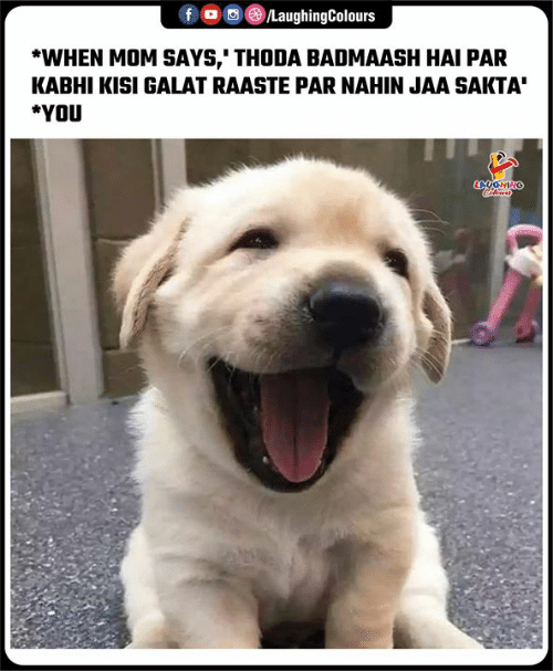 Indianpeoplefacebook, Mom, and You: f  /LaughingColours  *WHEN MOM SAYS,' THODA BADMAASH HAI PAR  KABHI KISI GALAT RAASTE PAR NAHIN JAA SAKTA  *YOU  LAUGHINO