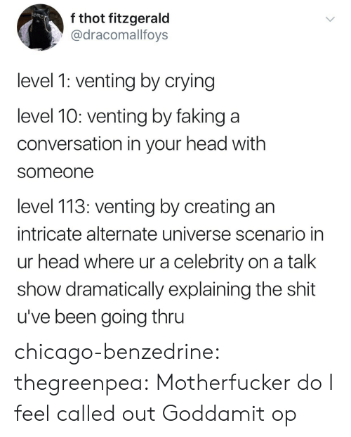 thot: f thot fitzgerald  @dracomallfoys  level 1: venting by crying  level 10: venting by faking a  conversation in your head with  someone  level 113: venting by creating an  intricate alternate universe scenario in  ur head where ur a celebrity on a talk  show dramatically explaining the shit  u've been going thru chicago-benzedrine: thegreenpea:  Motherfucker do I feel called out   Goddamit op