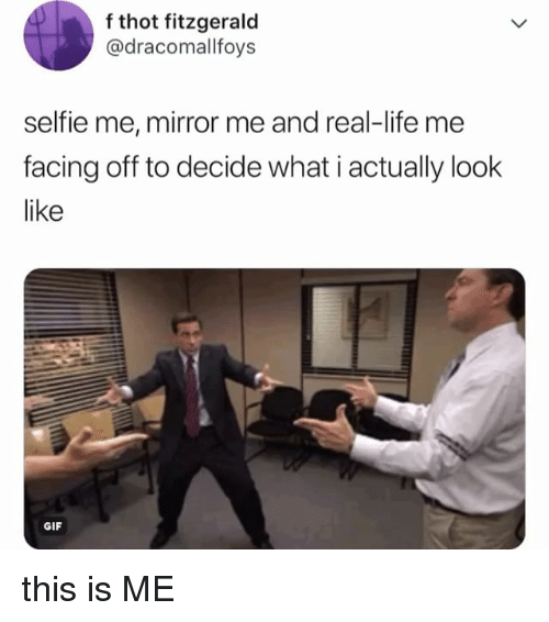 Gif, Life, and Selfie: f thot fitzgerald  @dracomallfoys  selfie me, mirror me and real-life me  facing off to decide what i actually look  like  GIF this is ME