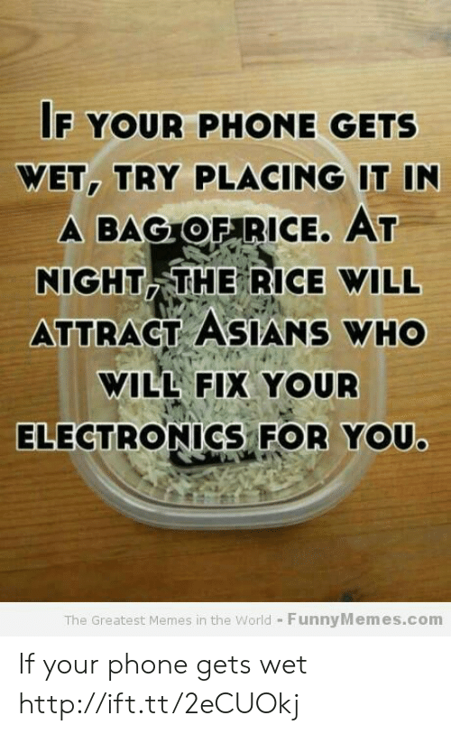Memes, Phone, and Http: F YOUR PHONE GETS  WET, TRY PLACING IT IN  A BAGOFARICE. AT  NIGHT THE RICE WILL  ATTRACT ASIANS WHO  WILL FIX YOUR  ELECTRONICS-FOR YOU.  The Greatest Memes in the World - FunnyMemes.com If your phone gets wet  http://ift.tt/2eCUOkj