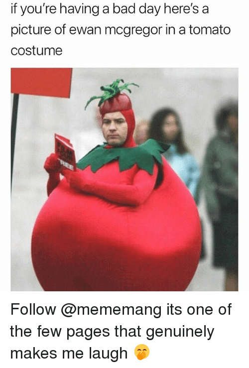 Bad, Bad Day, and Funny: f  you're  having  a  bad  day  here's  a  picture of ewan mcgregor in a tomato  costumee Follow @mememang its one of the few pages that genuinely makes me laugh 🤭