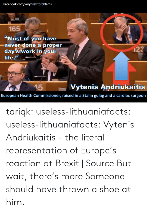 "Stalin Gulag: Facebook.com/veryBrexitproblems  165  ""Most of you have  day'stwork in your  C0  -never done a proper  123  life.  45  Vytenis Andriukaitis  European Health Commissioner, raised in a Stalin gulag and a cardiac surgeon tariqk:  useless-lithuaniafacts:  useless-lithuaniafacts:  Vytenis Andriukaitis - the literal representation of Europe's reaction at Brexit 