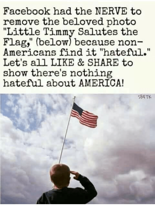 "America, Facebook, and Memes: Facebook had the NERVE to  remove the beloved photo  ""Little Timmy Salutes the  Flag,"" (below) because non-  Americans find it ""hateful.""  Let's all LIKE & SHARE to  show there's nothing  hateful about AMERICA!  10  $84TK"