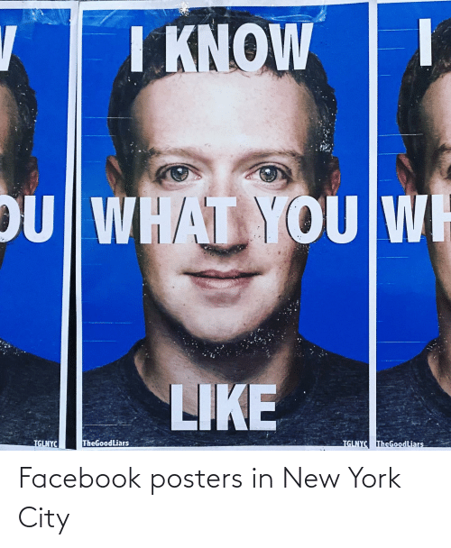in-new-york-city: Facebook posters in New York City