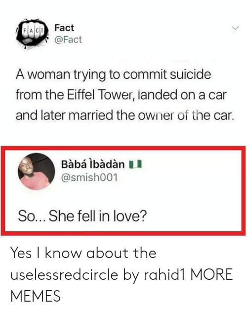 Dank, Love, and Memes: FACIT Fact  @Fact  A woman trying to commit suicide  from the Eiffel Tower, landed on a car  and later married the owner of the car.  Babá ibàdàn II  @smish001  So... She fell in love? Yes I know about the uselessredcircle by rahid1 MORE MEMES