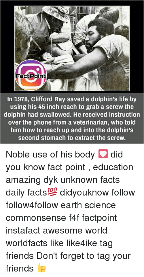 Dolphinately: FactPoin  In 1978, Clifford Ray saved a dolphin's life by  using hiS 45 inch reach to grab a screw the  dolphin had swallowed. He received instruction  over the phone from a veterinarian, who told  him how to reach up and into the dolphin's  second stomach to extract the screw. Noble use of his body 💟 did you know fact point , education amazing dyk unknown facts daily facts💯 didyouknow follow follow4follow earth science commonsense f4f factpoint instafact awesome world worldfacts like like4ike tag friends Don't forget to tag your friends 👍