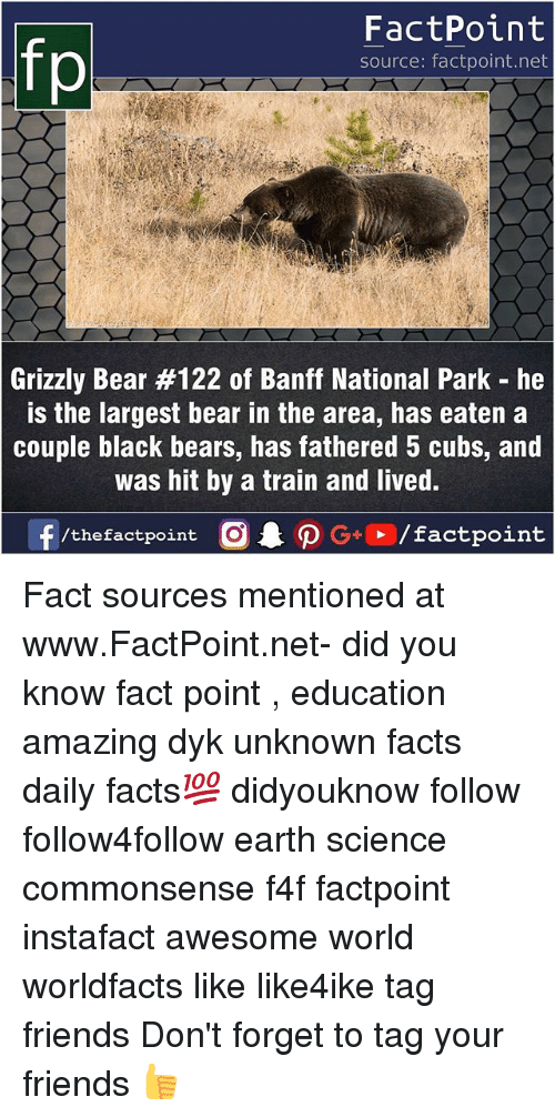 Facts, Friends, and Memes: FactPoint  source: factpoint.net  Grizzly Bear #122 of Banff National Park-he  s the largest bear in the area, has eaten a  couple black bears, has fathered 5 cubs, and  was hit by a train and lived.  f/thefactpoint  G+/factpoint Fact sources mentioned at www.FactPoint.net- did you know fact point , education amazing dyk unknown facts daily facts💯 didyouknow follow follow4follow earth science commonsense f4f factpoint instafact awesome world worldfacts like like4ike tag friends Don't forget to tag your friends 👍