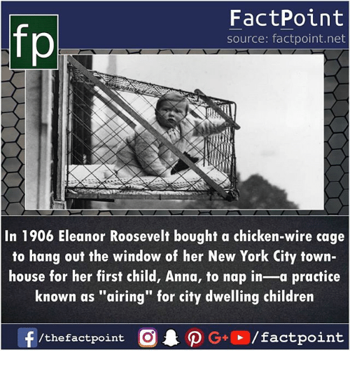 """Anna, Children, and Memes: FactPoint  source: factpoint.net  In 1906 Eleanor Roosevelt bought a chicken-wire cage  to hang out the window of her New York City town-  house for her first child, Anna, to nap in-a practice  known as """"airing"""" for city dwelling children"""