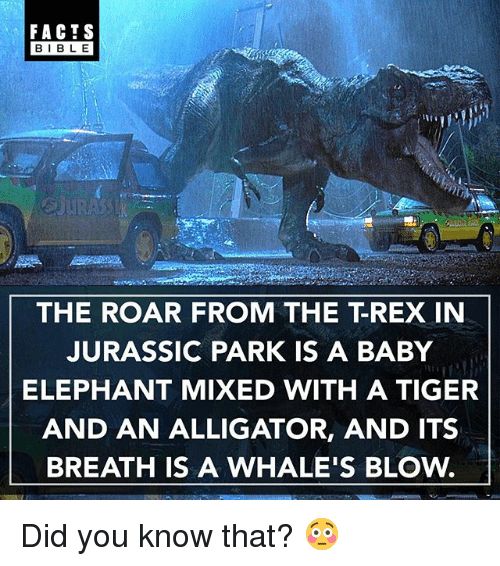 Facts, Jurassic Park, and Memes: FACTS  BIBLE  BIBL E  THE ROAR FROM THE T-REX IN  JURASSIC PARK IS A BABY  ELEPHANT MIXED WITH A TIGER  AND AN ALLIGATOR, AND ITS  BREATH IS A WHALE'S BLOw. Did you know that? 😳