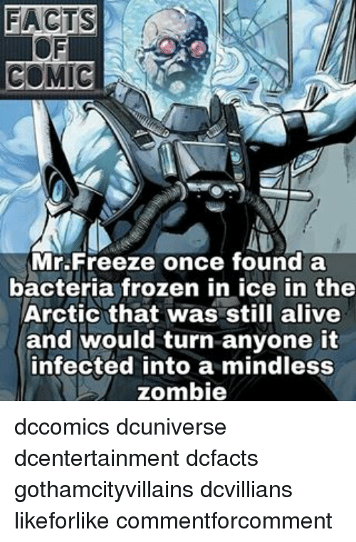 zombi: FACTS  COMIC  Mr Freeze once found a  bacteria frozen in ice in the  Arctic that was still alive  and would turn anyone it  infected into a mindless  zombie dccomics dcuniverse dcentertainment dcfacts gothamcityvillains dcvillians likeforlike commentforcomment