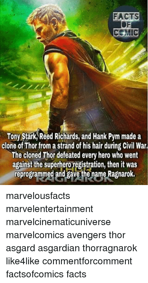 Asgardian: FACTS  COMIC  Tony Stark Reed Richards, and Hank Pym made a  clone ofThor from a strand of his hair during Civil War  The cloned Thor defeated every hero who went  against the superhero registration, then it was  reprogrammed and gave the name Ragnarok. marvelousfacts marvelentertainment marvelcinematicuniverse marvelcomics avengers thor asgard asgardian thorragnarok like4like commentforcomment factsofcomics facts