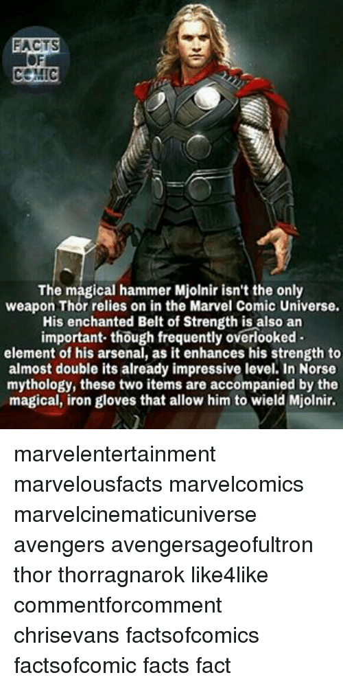 Mjølnir: FACTS  The magical hammer Mjolnir isn't the only  weapon Thor relies on in the Marvel Comic Universe.  His enchanted Belt of Strength is also an  important though frequently overlooked  element of his arsenal, as it enhances his strength to  almost double its already impressive level. In Norse  mythology, these two items are accompanied by the  magical, iron gloves that allow him to wield Mjolnir. marvelentertainment marvelousfacts marvelcomics marvelcinematicuniverse avengers avengersageofultron thor thorragnarok like4like commentforcomment chrisevans factsofcomics factsofcomic facts fact