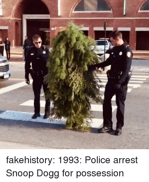 Police, Snoop, and Snoop Dogg: fakehistory:  1993: Police arrest Snoop Dogg for possession