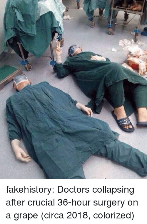 Tumblr, Blog, and Com: fakehistory:  Doctors collapsing after crucial 36-hour surgery on a grape (circa 2018, colorized)