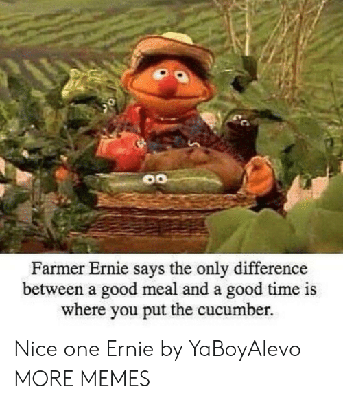 Dank, Memes, and Target: Farmer Ernie s  ays the only difference  between a good meal and a good time is  where you put the cucumber. Nice one Ernie by YaBoyAlevo MORE MEMES
