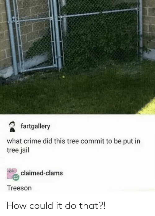 Crime, Jail, and Tree: fartgallery  what crime did this tree commit to be put in  tree jail  claimed-clams  Treeson How could it do that?!