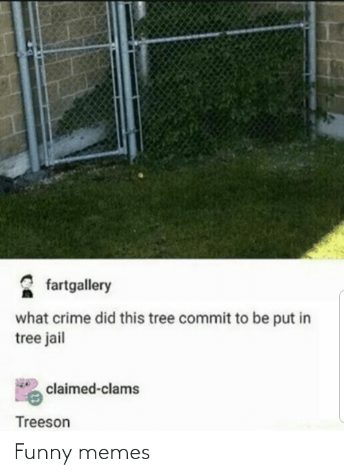 Commit: fartgallery  what crime did this tree commit to be put in  tree jail  claimed-clams  Treeson Funny memes