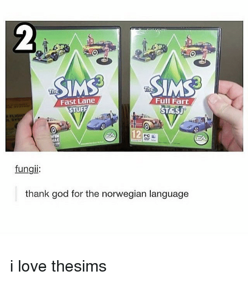 God, Love, and Memes: Fast Lane  STUFF  Full Fart  STESJ  AAC  fungii  thank god for the norwegian language i love thesims