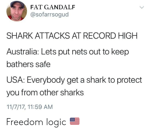 Gandalf, Logic, and Shark: FAT GANDALF  @sofarrsogud  SHARK ATTACKS AT RECORD HIGH  Australia: Lets put nets out to keep  bathers safe  USA: Everybody get a shark to protect  you from other sharks  11/7/17, 11:59 AM Freedom logic 🇺🇸